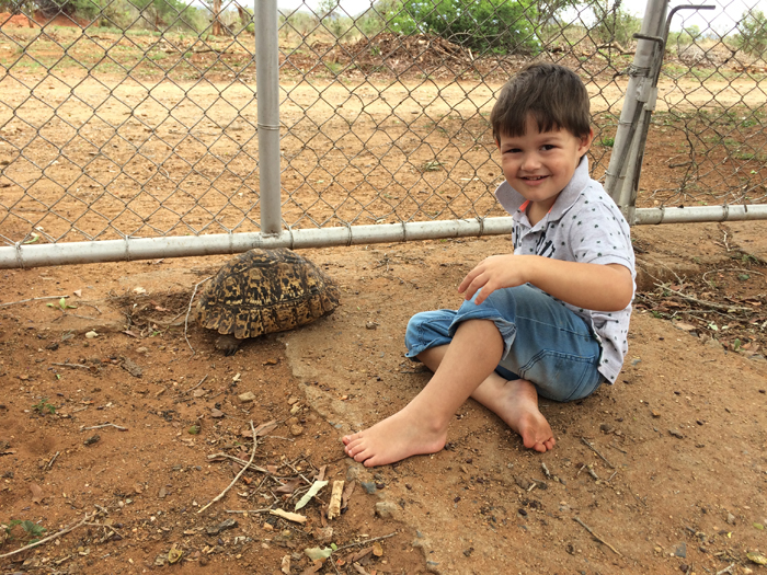 Our son and a tortoise in our garden at the gate
