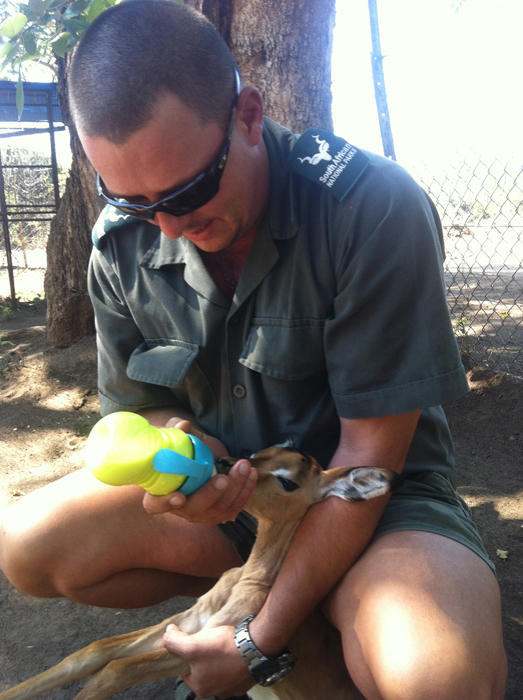 Baby impala being hand fed by Steven