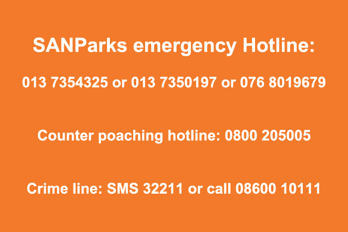 emergency phone numbers for reporting emergencies in the park